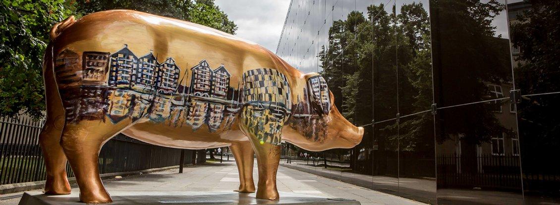 Pigs-Gone-Wild-55-1130
