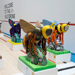 little bees on display